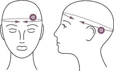 headmeasurement.jpg