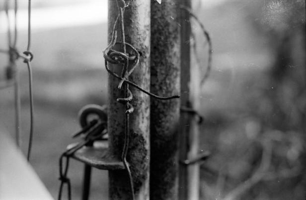 gate+post.jpg