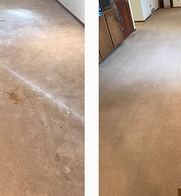 Carpet cleaning beforeafter.jpg