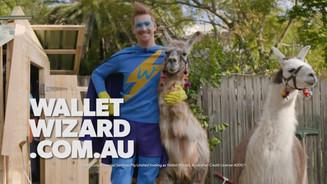 Wallet Wizard Llamas