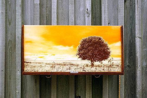 Tinted Sky Lightbox