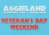 Veteran's Day Weekend GP.jpg