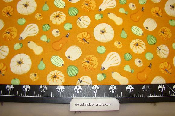 BX Harvest Squash Orange
