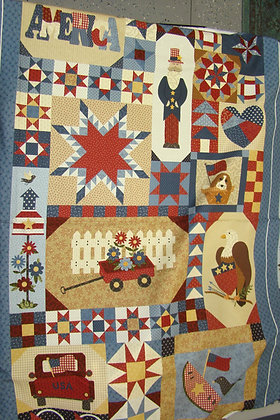 Marcus Patches of Americana Panel