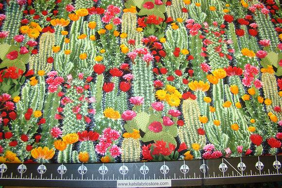 TT Cactus Collection
