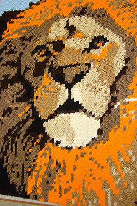 Tiger Face Illusion Blanket Crocheted C2C