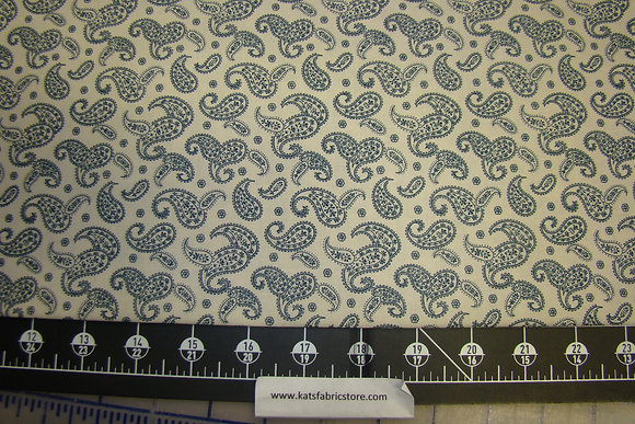 Remember When Paisley Navy on Cream