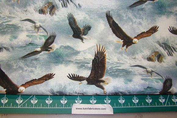 SC Ouest of the Hunter Eagle Flight Blue