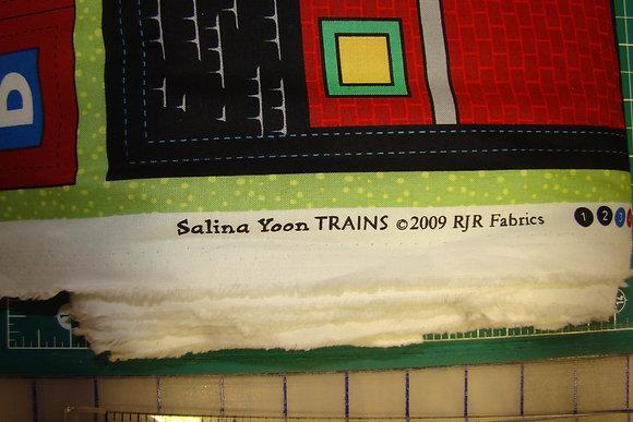 RJR SalinaYoon Trains 2009 Panel