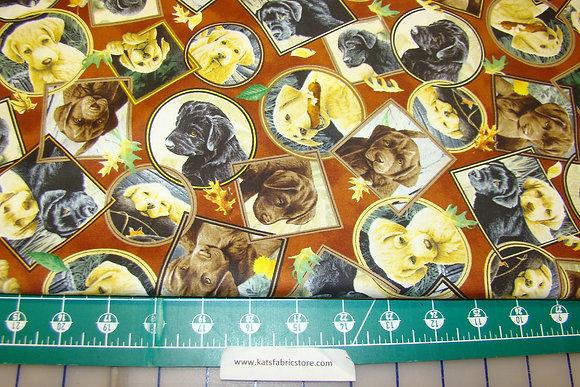 QT Labrador-able Labrador Portraits Brown