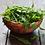 Salad Mix Tin - Seedball bowl of salad leaves