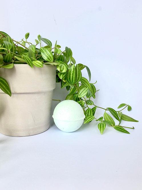 Minty Fresh Bath Bomb - The Salty Herb