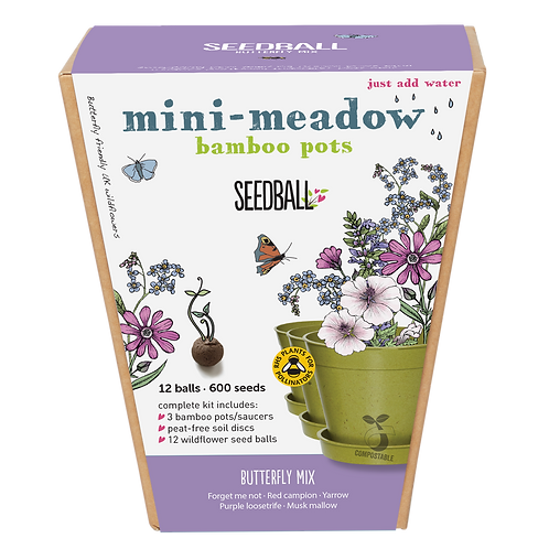 Butterfly Mix Mini Meadow Gift Set Seedball Front View of box