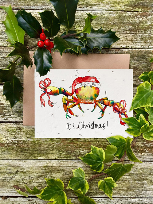 Christmas Crab - Plantable Wildflower Card - Loop Loop