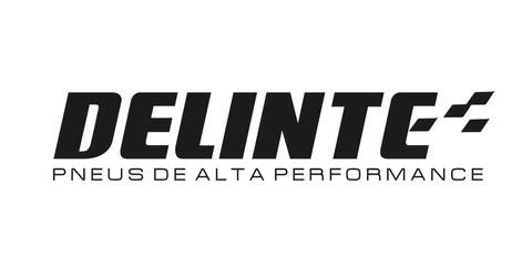 logo-delinte-1108.jpg