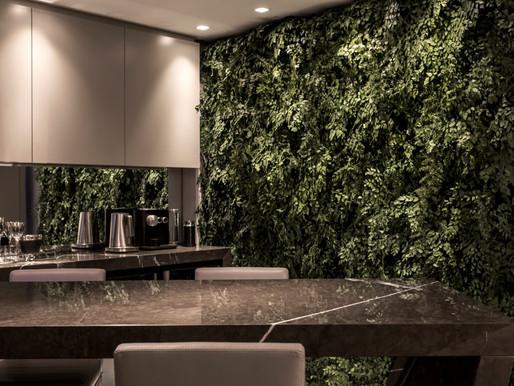 Arquitetura biofílica proporciona interação dos ambientes com a natureza