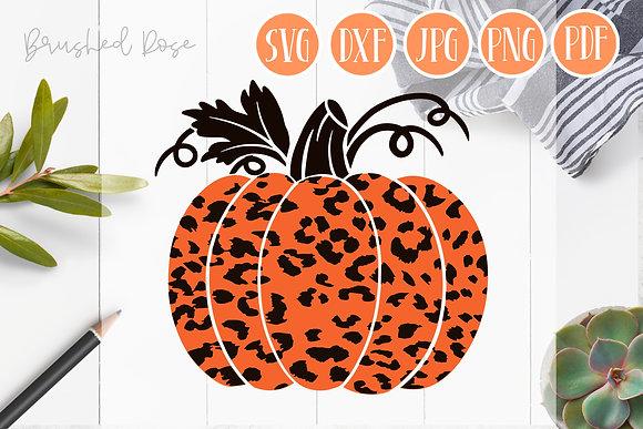 leopard pumpkin svg, layered svg, fall pumpkin, pumpkin svg