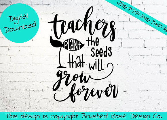 Teachers plant the seeds