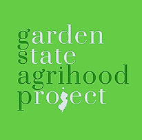 GSAP logo.jpg