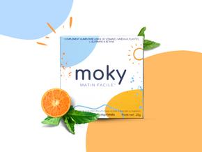L'histoire de Moky, chapitre 1 : l'origine du projet