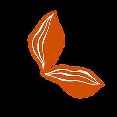 feuilles_oranges_devotion