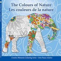 Pencil Patterns The Colours of Nature adult colouring book