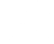 lung icon.png