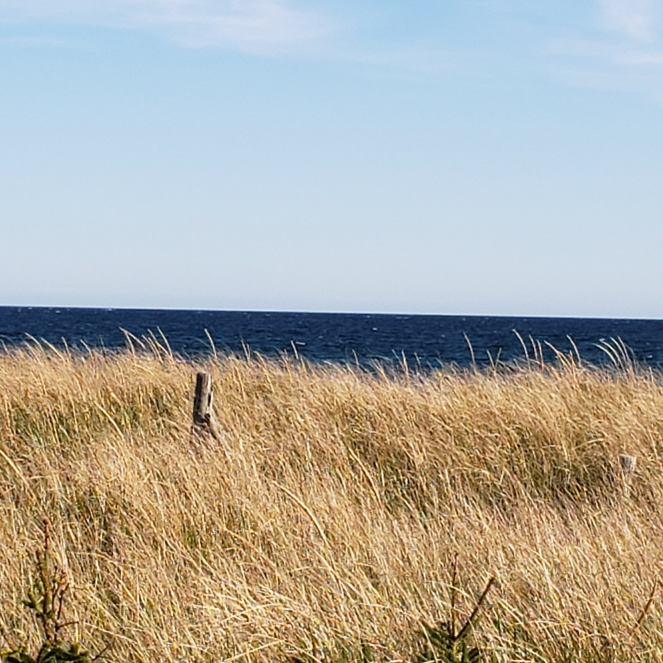 land, sea, sky.