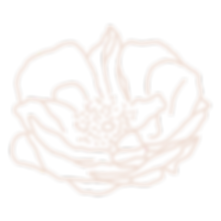 Rosewater-Favicon_edited.png