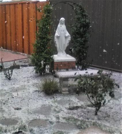 Mary Garden, Snow Begins Friday, 2.12.21