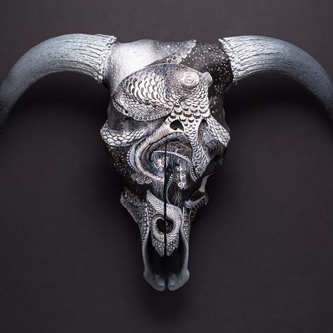 """""""Toro"""" Hereford Bull"""
