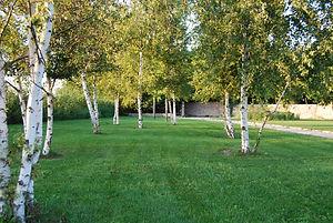 Progettazione parchi e giardini Verona