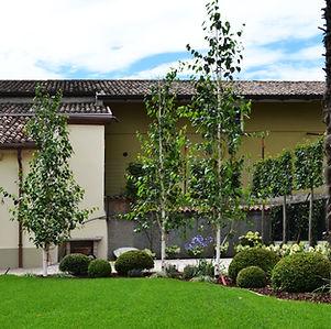 realizzazione giardino privato Sommacampagna Verona