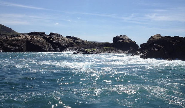 Seal Island Boat Trip aboard the Cornish Crest St Ives Boat Charters