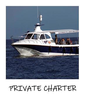 Private charter polaroid.jpg