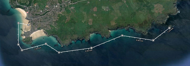 Satellite map of the boat trip to Seal Island
