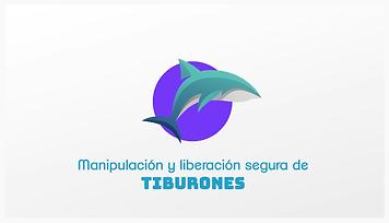Tiburones manipulación.png