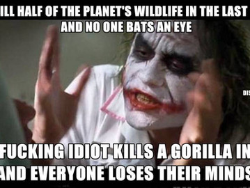 Half of the animal wildlife on the planet has been killed in the last 40 years, but shoot a gorilla