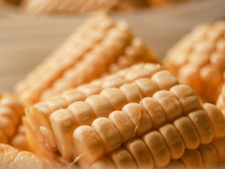 Alimentos transgénicos: un riesgo serio para la salud.