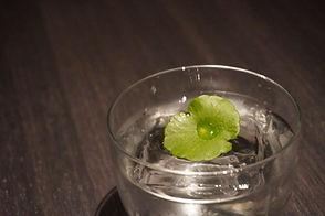 Cocktail #9.jpeg