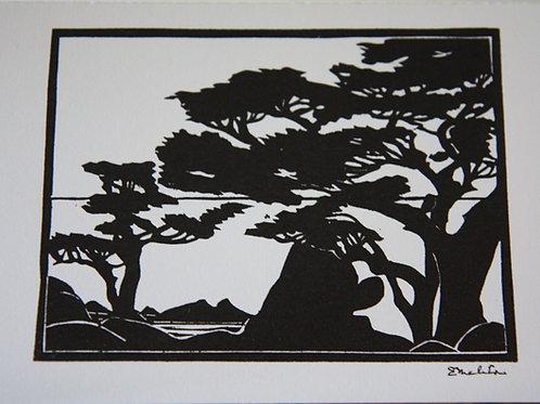 Cypress Tree Monterey