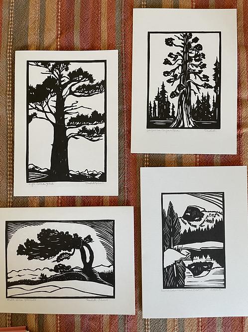 Card series- High Sierra
