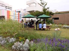 病院前ガーデン 2014-2015