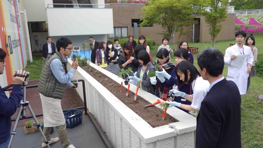 病院前ガーデン 苗植えイベント