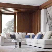 tr liam ii sectional sofa, sidy coffee a
