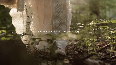 Agnieszka + Adam | Ślub w Ojcowie
