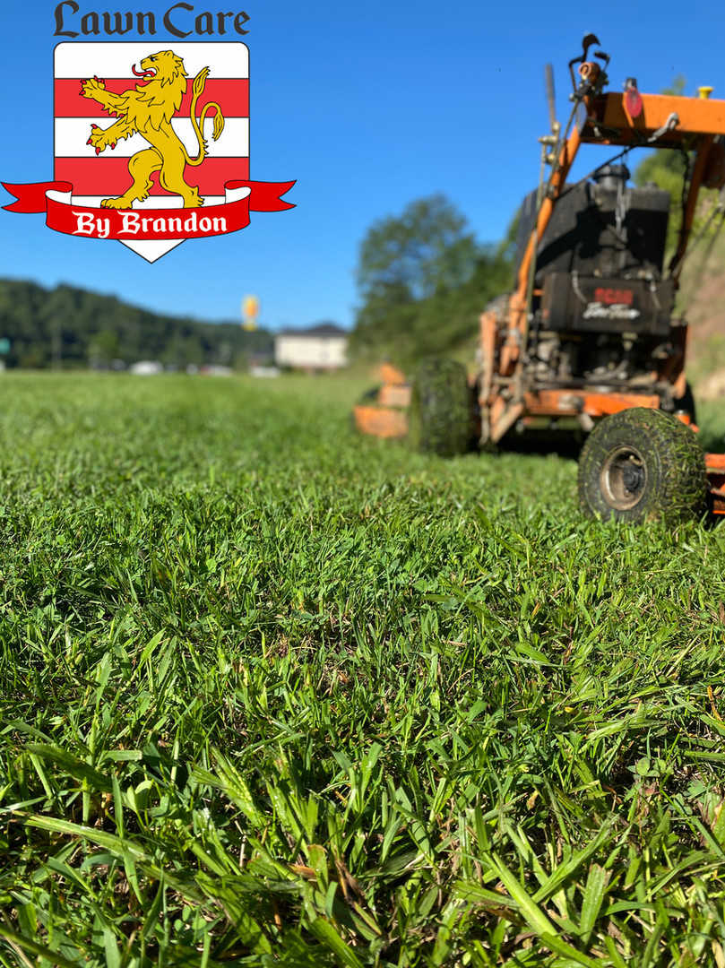 Commercial mow