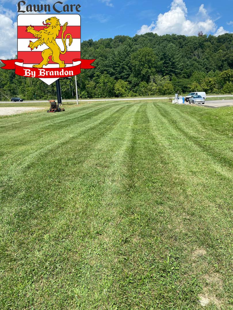 standard lawn cut