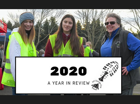 2020 Runs/Walks Year In Review