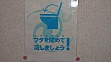 DSC_0165.JPG.jpg